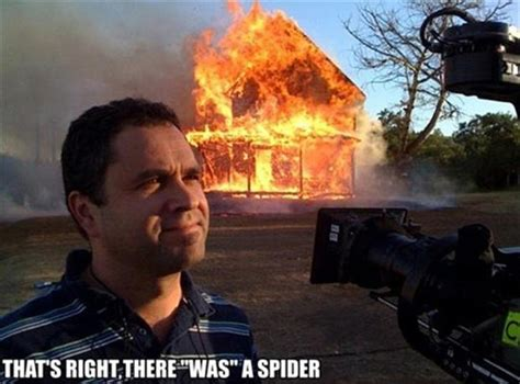 how to kill spiders in house burn house down to kill a spider dump a day