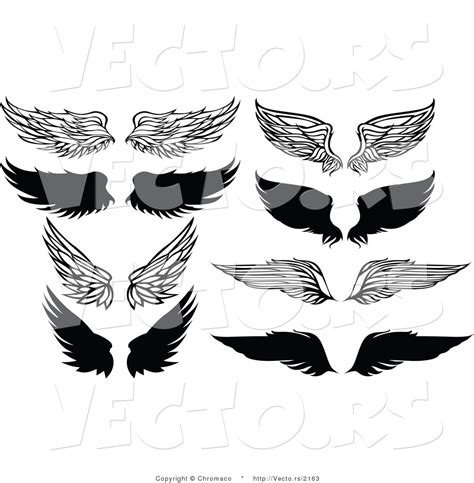 unique design definition vector of 8 unique feathered wings black and white