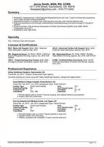 exle travel resume free sle