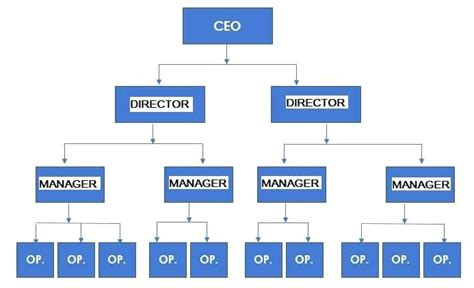 functional organizational chart template deliverable structure chart virtuart me
