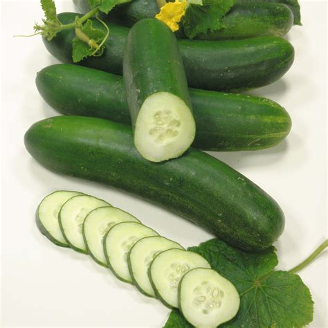For Cucumbers vegetables images cucumbers hd wallpaper and background photos 35203447