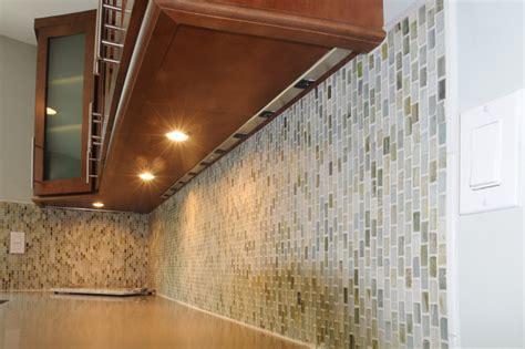 Dark Shaker Kitchen Contemporary Kitchen Tampa by Strobel Design Build
