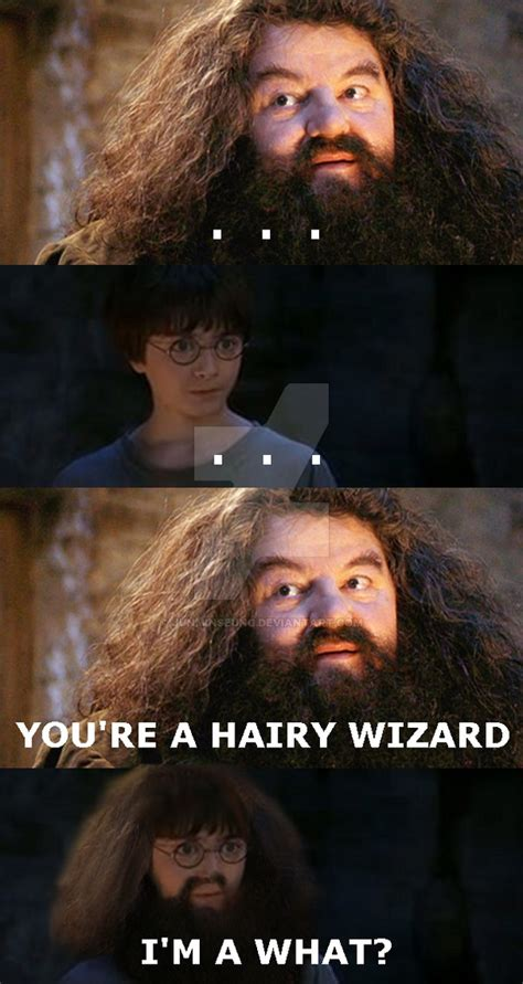 You Re A Wizard Harry Meme - hairy wizard by junminseung on deviantart