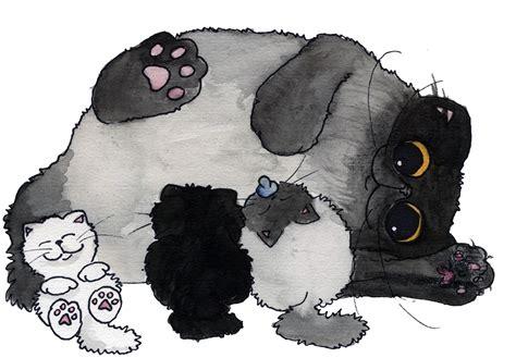toltechi persiani cuccioli gatto persiano toltechi