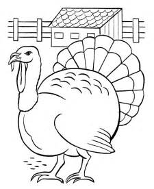 turkey colors free printable turkey coloring pages for