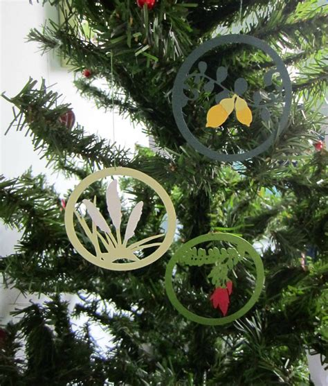 kiwi christmas decorations felt