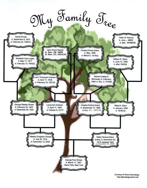 my tree my family tree smeal branch