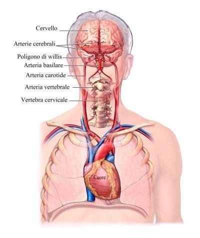 pressione alta e giramenti di testa vertigini o giramenti di testa sintomi cause diagnosi e