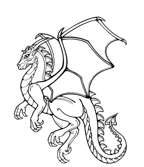 dragon coloring pages realistic coloring