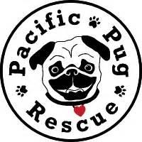 oregon pug rescue 1 800 petmeds cares