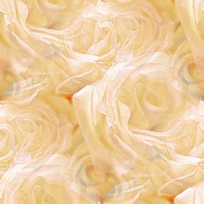 sepia tone roses background image wallpaper  texture