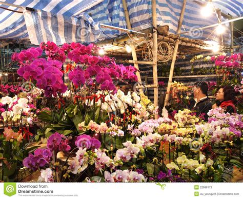 new year flower market singapore venta de las flores durante a 241 o nuevo lunar chino foto de