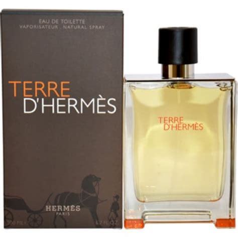 Terrr D Hermes hermes terre d hermes edt 100ml for