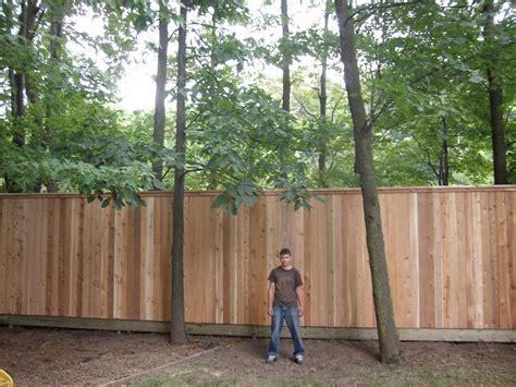 cloture en bois pour jardin pas cher cl 244 ture bois hauteur 60 cm