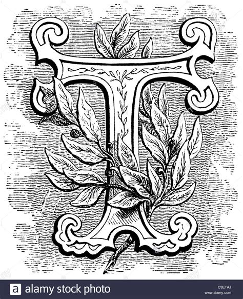 early 14 line decorative foliated initial letter
