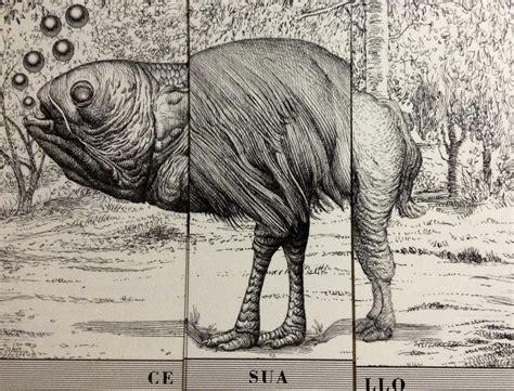 animalario universal pdf pdf libro e animalario universal del profesor revillod fabuloso almanaque de la fauna mundial