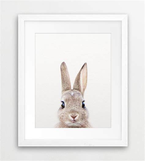 Bunny Nursery Decor Best 25 Bunny Nursery Ideas On Pinterest