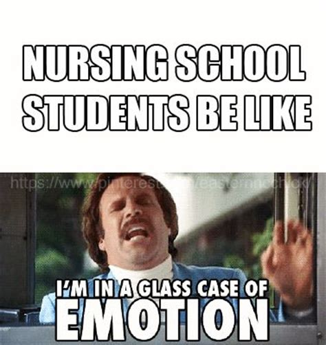 Nursing School Meme - the 25 best nursing school memes ideas on pinterest med