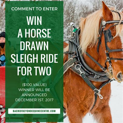 Horse Sweepstakes 2017 - horse drawn sleigh ride facebook contest 2017 back of beyond equine centre