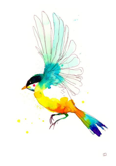 bird colour drawing paint pretty image 269239 on favim