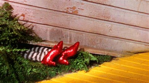 ruby slippers house wizard of oz gif find on giphy