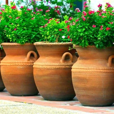 outdoor plant pots near me plant pots near me outdoor cheap plant pots dubai plant