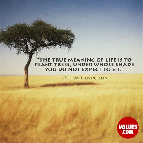 Quote About Planting Trees For Future Generations the true meaning of is to plant trees whose