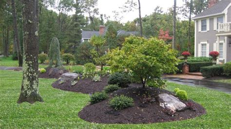 landscape design island a bermed front yard planting island gardening yards flowering shrubs and