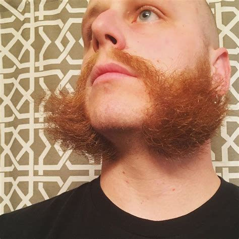cool mutton chop styles cool mutton chop styles friendly mutton chops wahl total