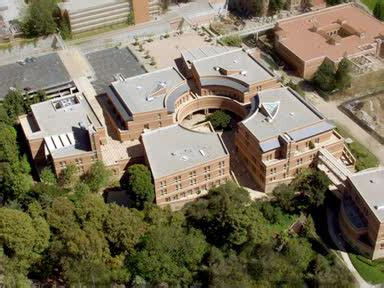 How Much Is Mba At Ucla by Real Ucla Mba Essay Exles By Aringo Clients