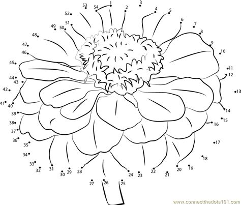 coloring pages zinnia zinnia dot to dot printable worksheet connect the dots