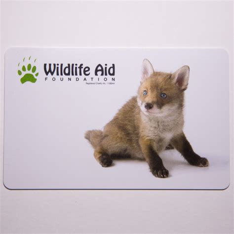 Fox Gift Card - gift card food for orphaned fox cubs wildlife aid foundation
