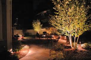 Landscape Up Lighting Landscapeonline Design Build Maintain Supply