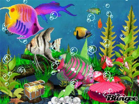 animated aquarium picture  blingeecom