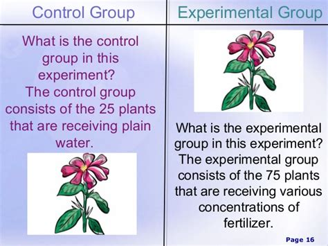 experimental group design scientific method power point
