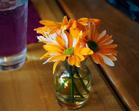 Small Vase Of Flowers by Orange Flowers In Small Vase Flickr Photo