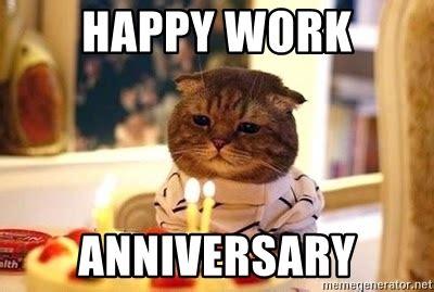 Happy Anniversary Meme - happy work anniversary birthday cat meme generator