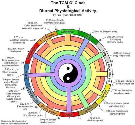 medicine meridians diagram tcm qi diurnal meridian clock ayurveda