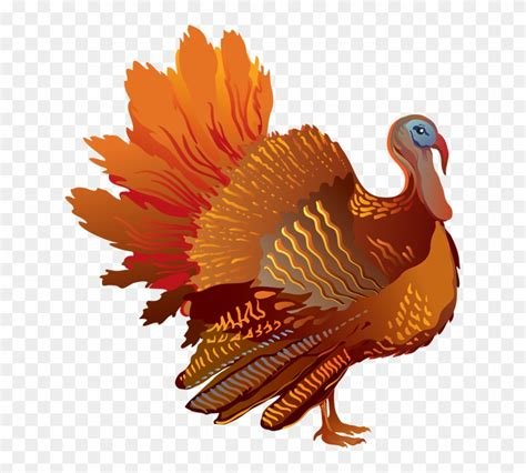 turkey images clip turkey clipart mask 51821 png images pngio
