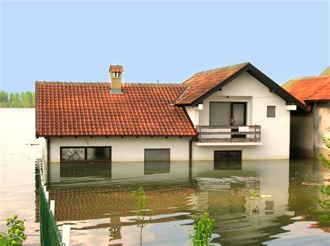 my house flooded now what chris buy houses