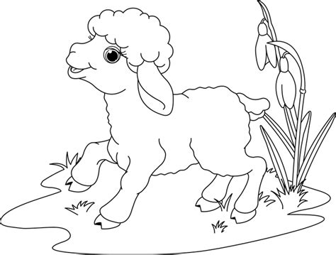 lamb of god coloring pages memes