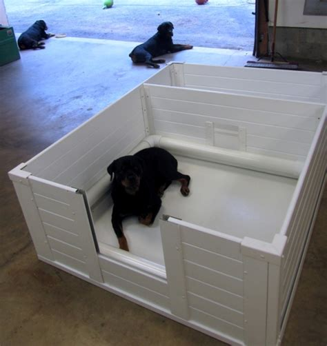 whelping box player rottweilers