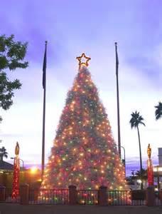 panoramio photo of chandler s tumbleweed christmas tree