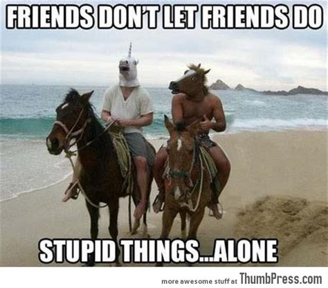 Stupid Friends Meme - friends dont let friends do stupid things alone