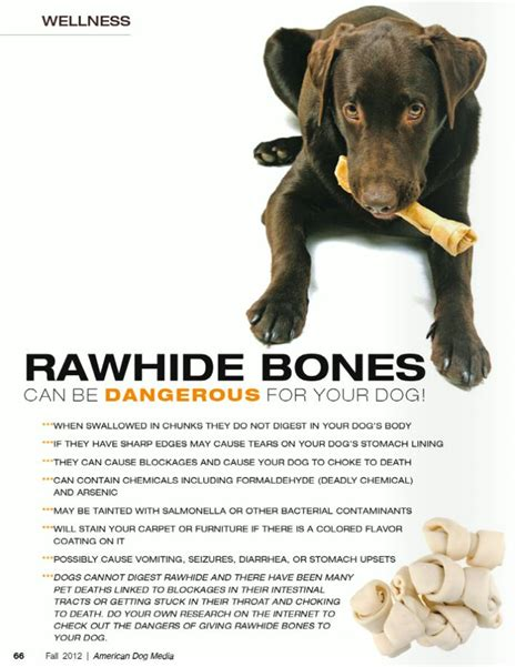 rawhide bones for dogs rawhide bones dangerous jager info our german shepherd pupp