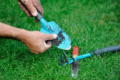 How To Clean Backyard by How To Care For Lawn And Garden Tools Diy