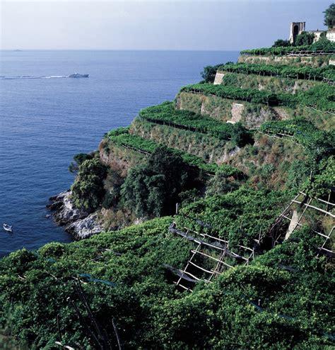 terrazzamenti in collina concorso fotografico i terrazzamenti 171 ponza racconta