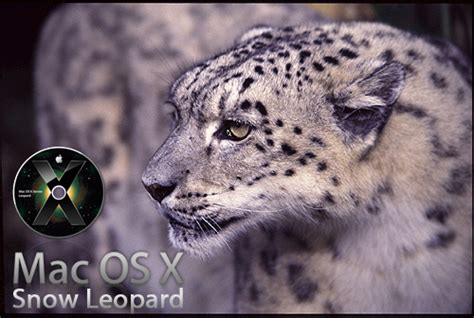 how to upgrade from snow leopard to lion how to upgrade mac os x snow leopard to os x lion 10 7