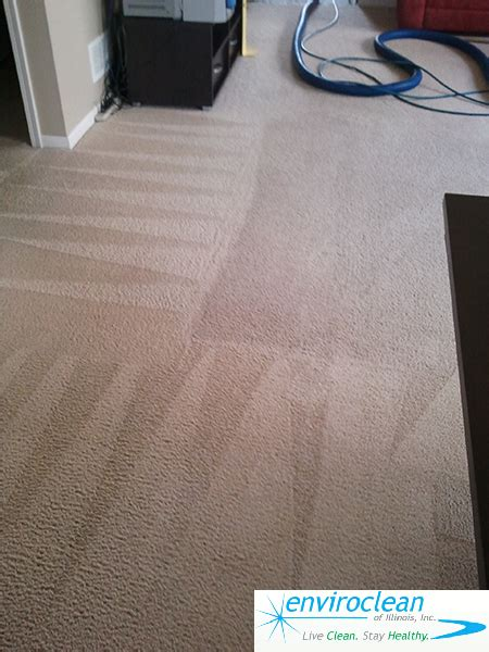 upholstery cleaning chaign il carpet cleaning huntley il enviroclean of illinois