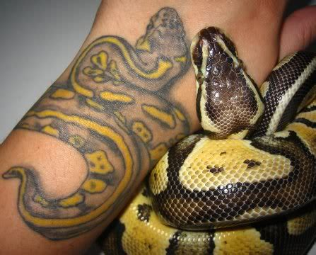 ball python tattoo snake tattoos